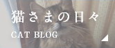 猫さまの日々 CAT BLOG