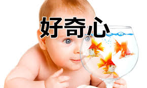 水槽の金魚に好奇心を示す赤ん坊の写真
