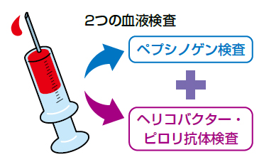 ABC検査で行われる血液検査