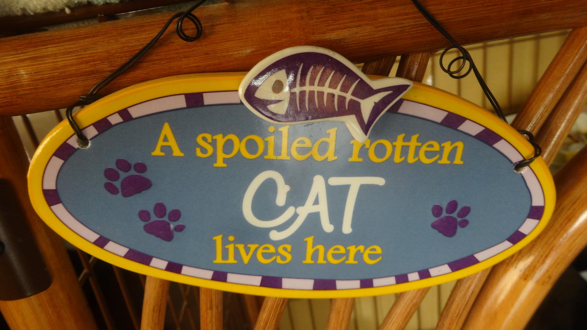 思い切り甘やかされた わがままなネコが この家に住んでいます と書かれた標語