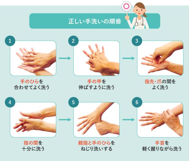 正しい手洗いの順番を示す図