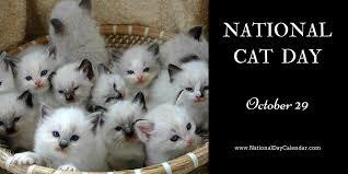 アメリカの10月29日のネコの日を祝うカード