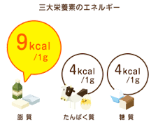 3大栄養素の1gから得られるエネルギー量を比較した図