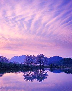 紫だちたる雲の写真