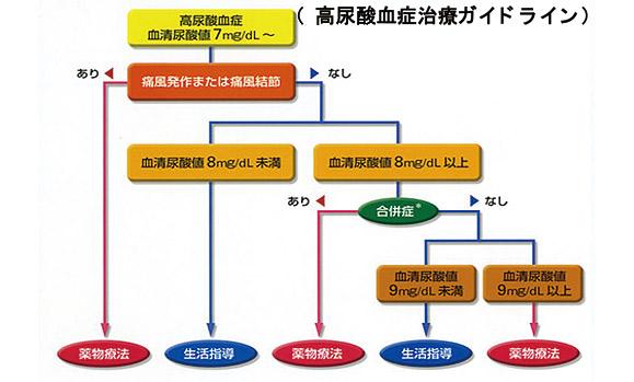 高尿酸血症の治療チャート