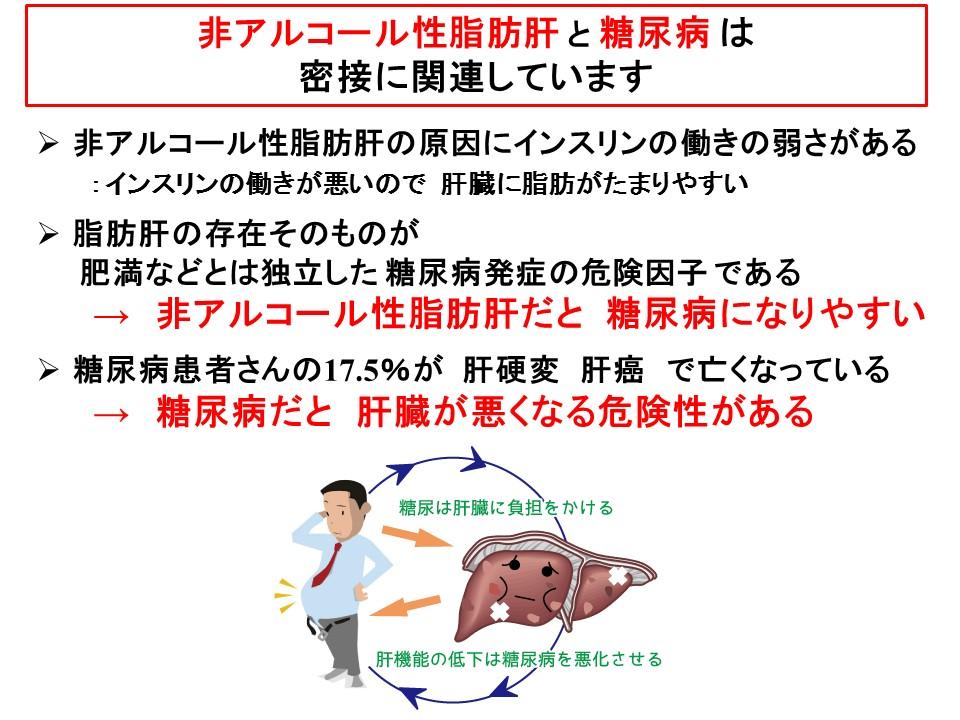 脂肪肝と糖尿病の相互作用の解説図