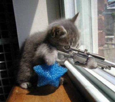 銃を構えてネズミを狙うネコ2