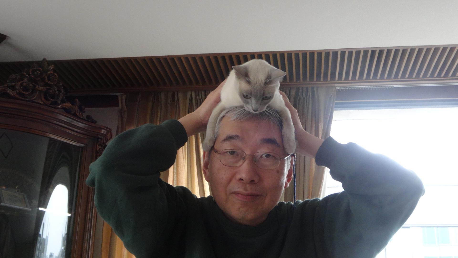 ネコかぶりの写真