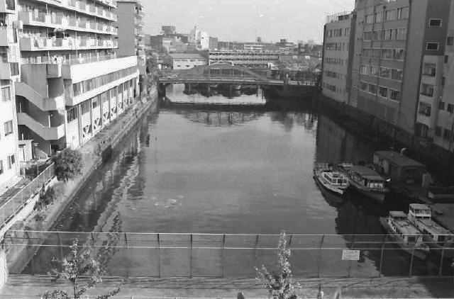 昔の桜川の写真