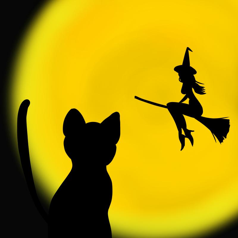 魔女と黒ネコ