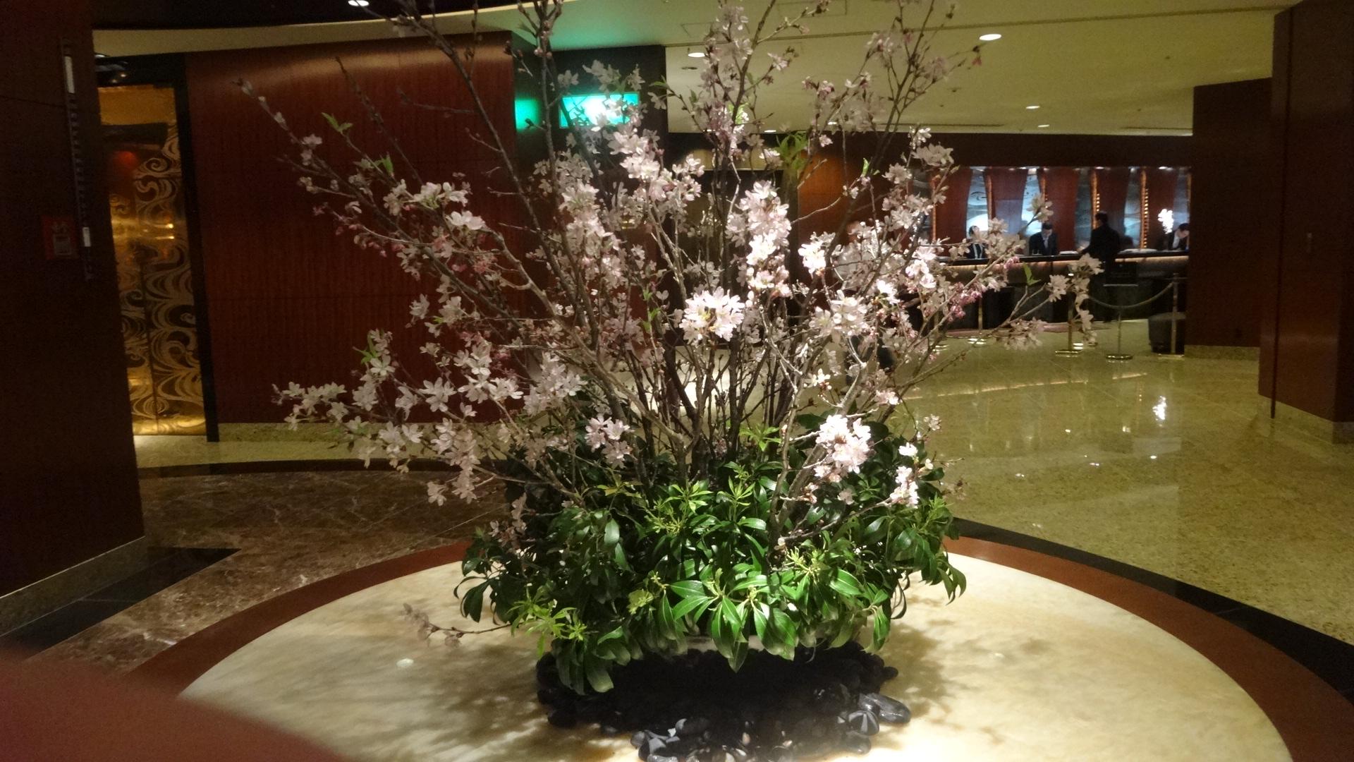 屋内の桜の写真その1