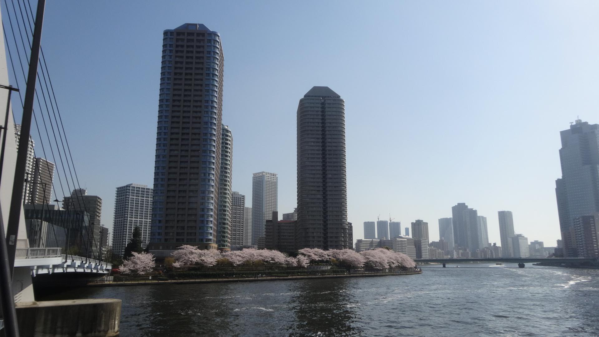 春のうららの隅田川の様子