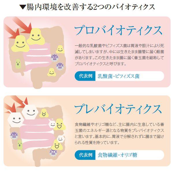 腸内細菌叢の乱れの改善を目指す治療
