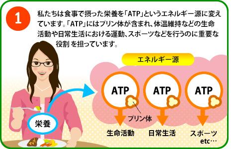 ATPの解説
