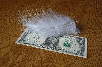 羽根のついたドル紙幣