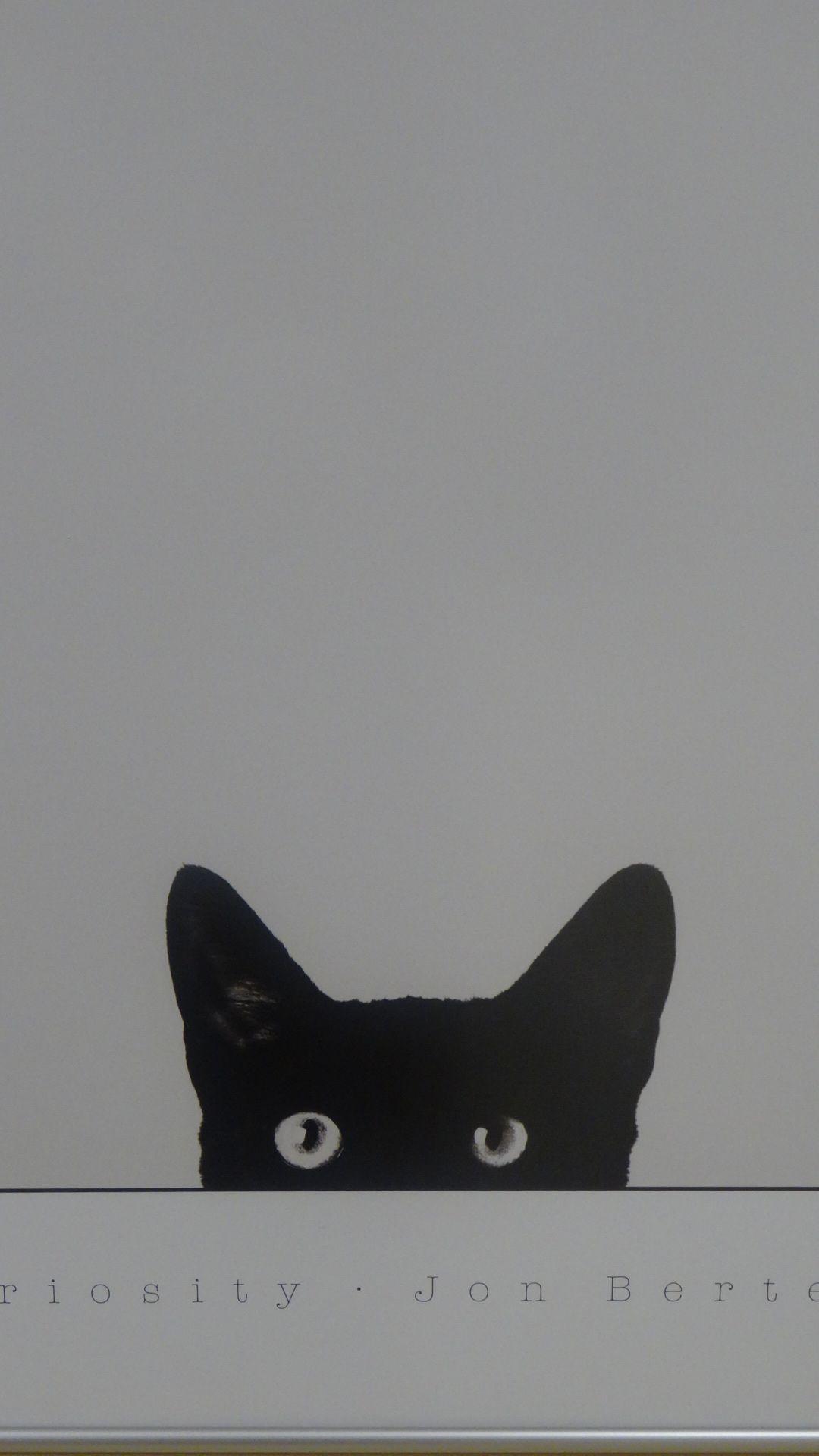 覗いている黒ネコ