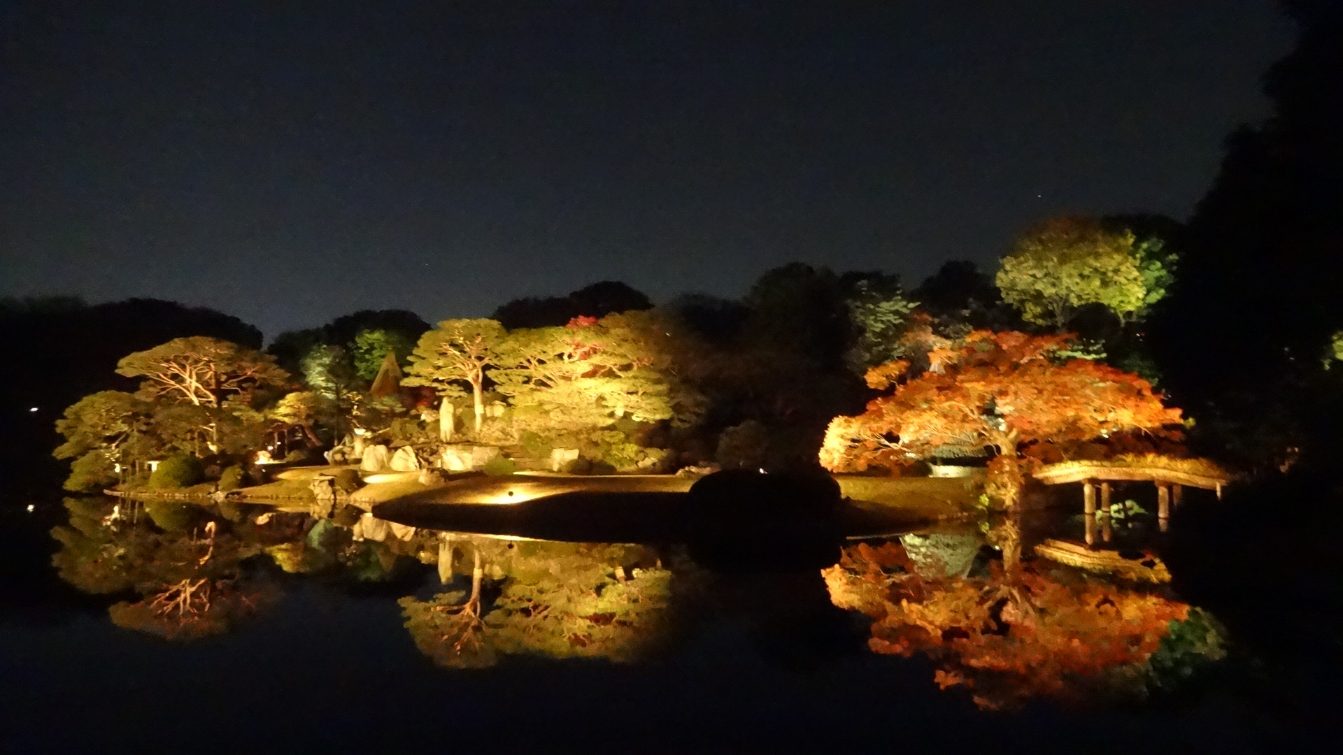 ライトアップされた庭園内の小島2