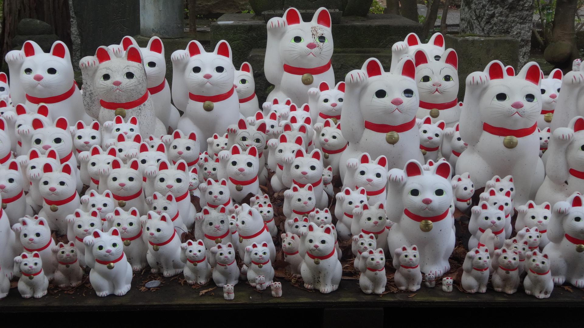 奉納されたたくさんの招き猫の置物2