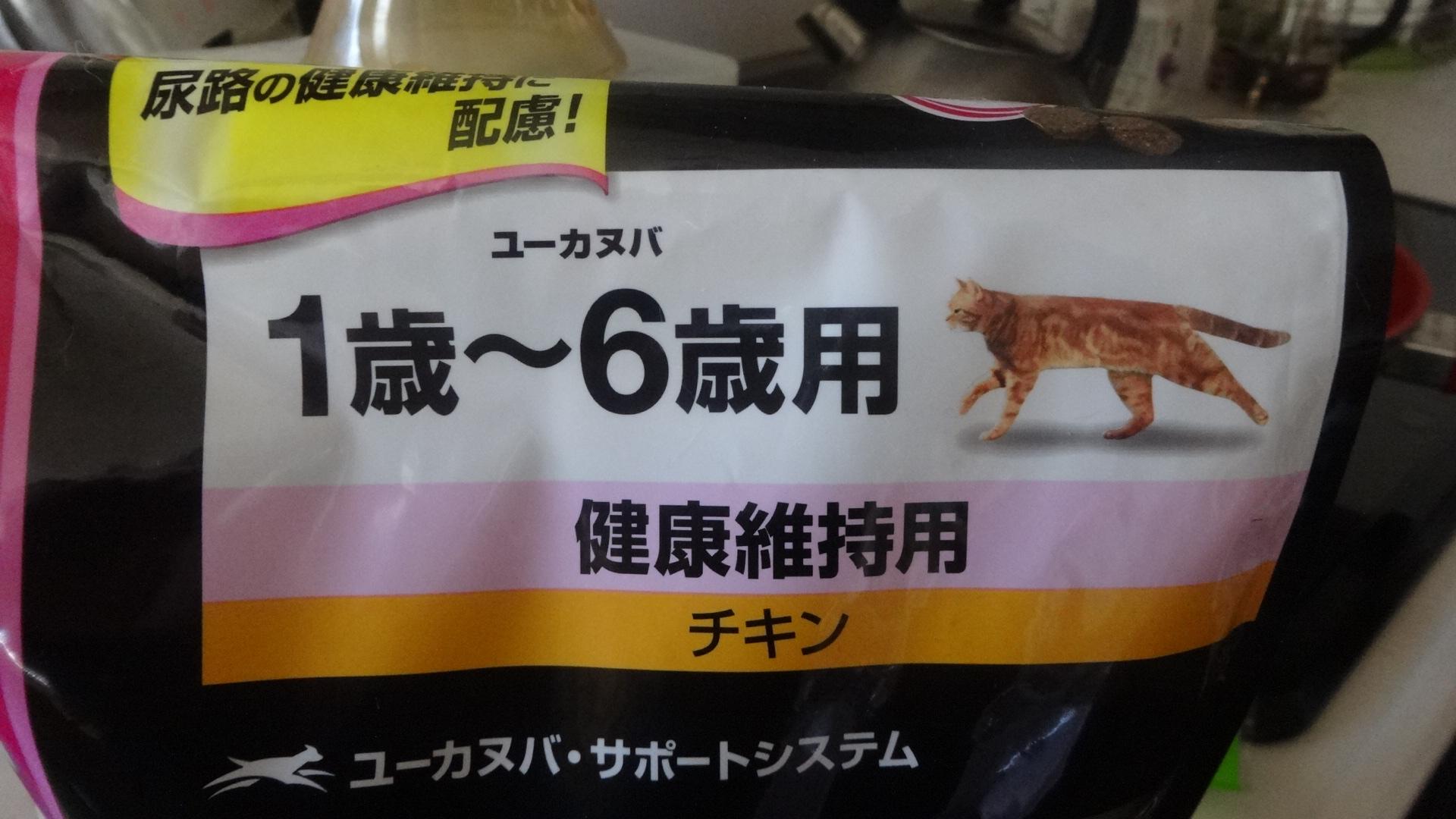 成ネコ用のカリカリ
