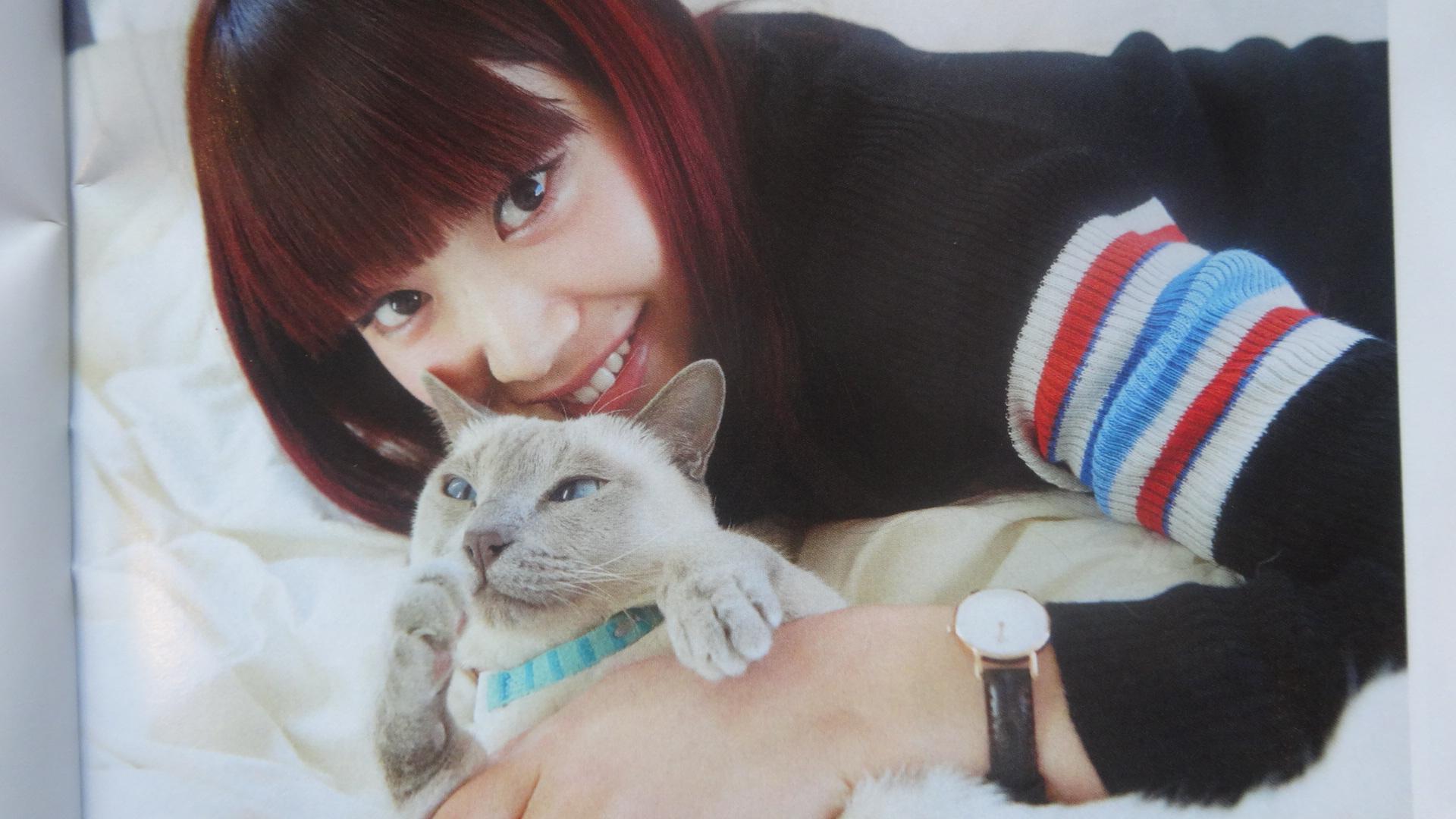 トンキニーズを抱く梅村妃奈子さん