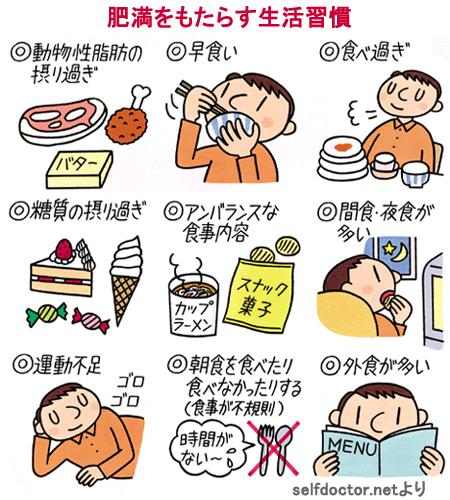 肥満を持もたらす生活習慣 食習慣のまとめ