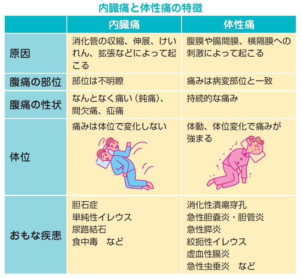 内臓痛と体性痛の特徴を比較する表