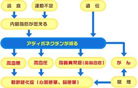 アデイポネクチン産生低下により誘導されるさまざまな病気をまとめた図