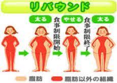 リバウンドで脂肪が増えることを示す図