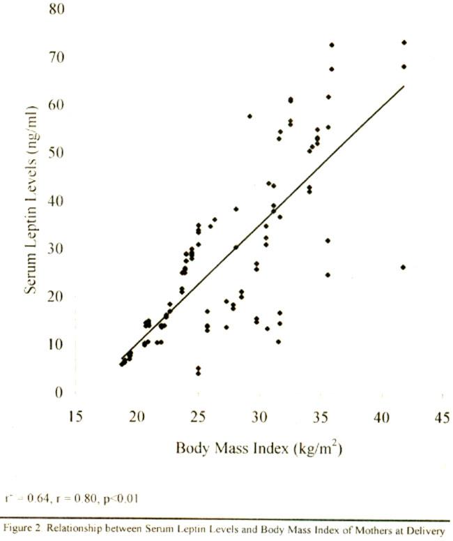 体重が減るとレプチンのレベルが下がり食欲が増すことを示す図