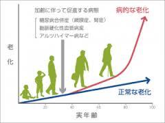 病死は老化の延長線上にあることを示すグラフ
