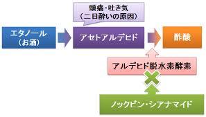 ノックビンの作用機序を示す図