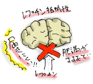 脳で起きているレプチン抵抗性を示す図