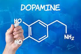 ドパミンの構造図