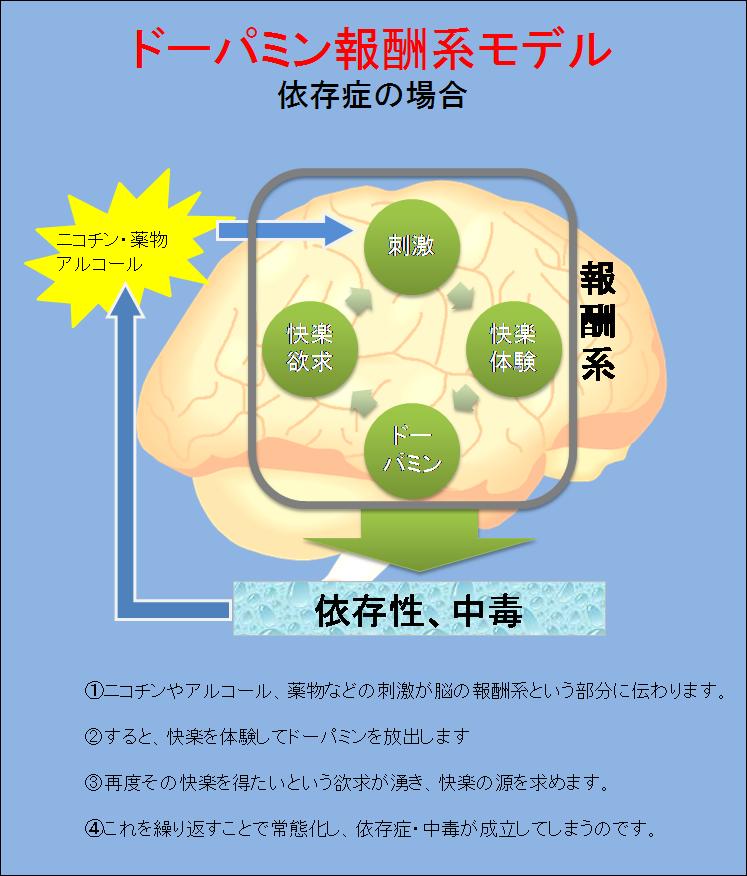 ドパミンの依存性形成への関与を示す図
