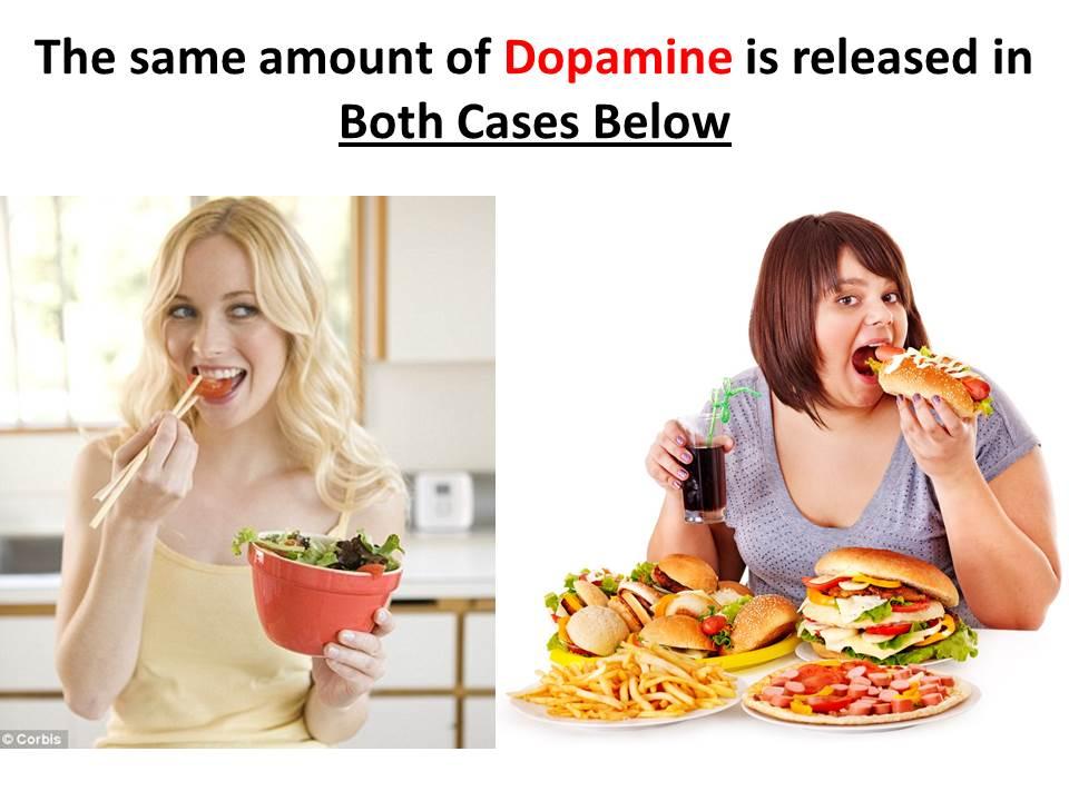 健康的な食事は報酬系領域でのドパミン合成・分泌を増やすことを示す図