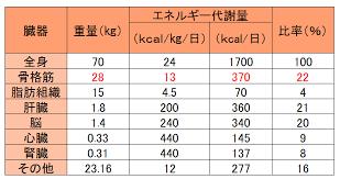 各臓器のエネルギー消費量を比べた図表