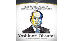 大隅先生の快挙を讃えるノーベル財団のホームページ
