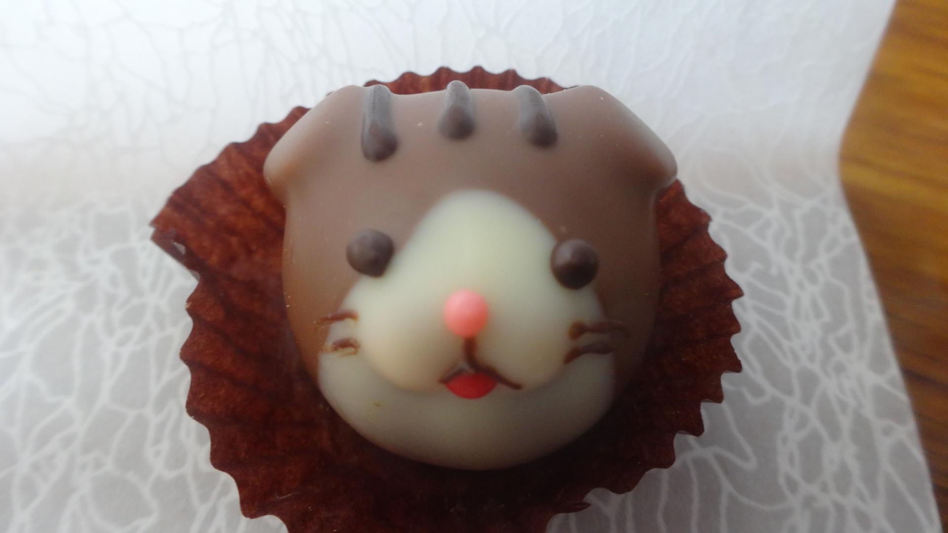 茶色いネコの顔のチョコレート