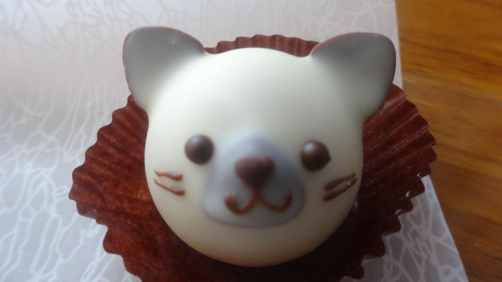 白いネコの顔のチョコレート