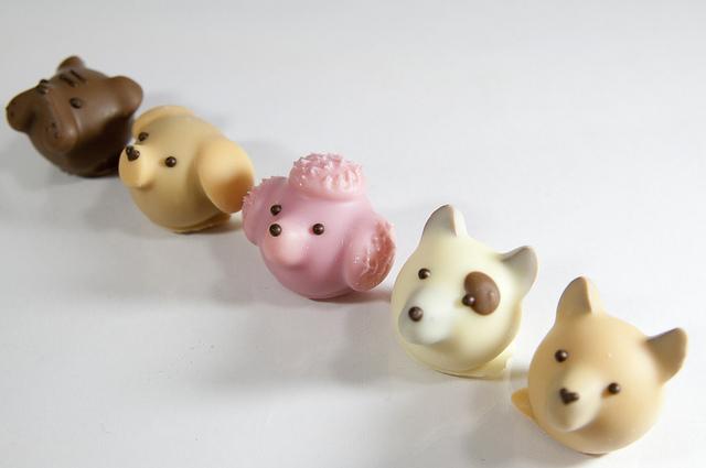 色々な動物の顔のチョコの写真