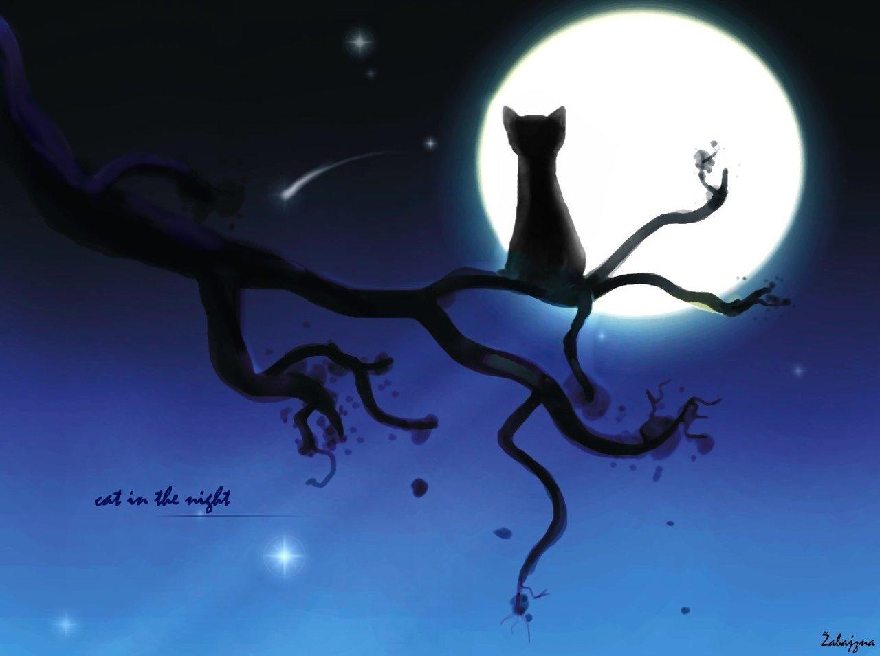 木の枝の上で満月を見つめるネコ