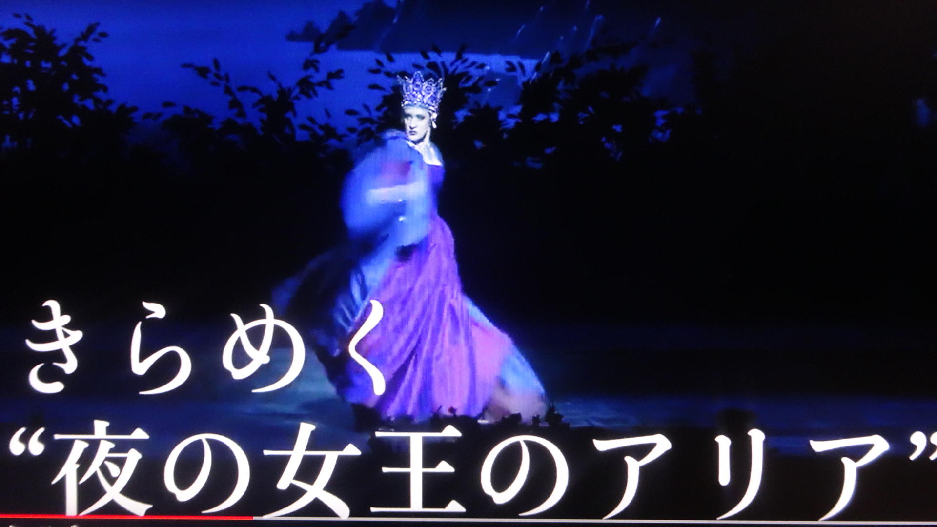 アリアを歌う夜の女王