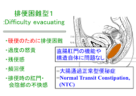 便排出障害型・骨盤底機能異常型の特徴を示した図