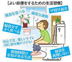 良い排便のための生活習慣をまとめた図