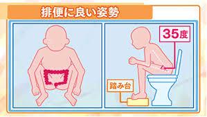 排便に良い姿勢の図示
