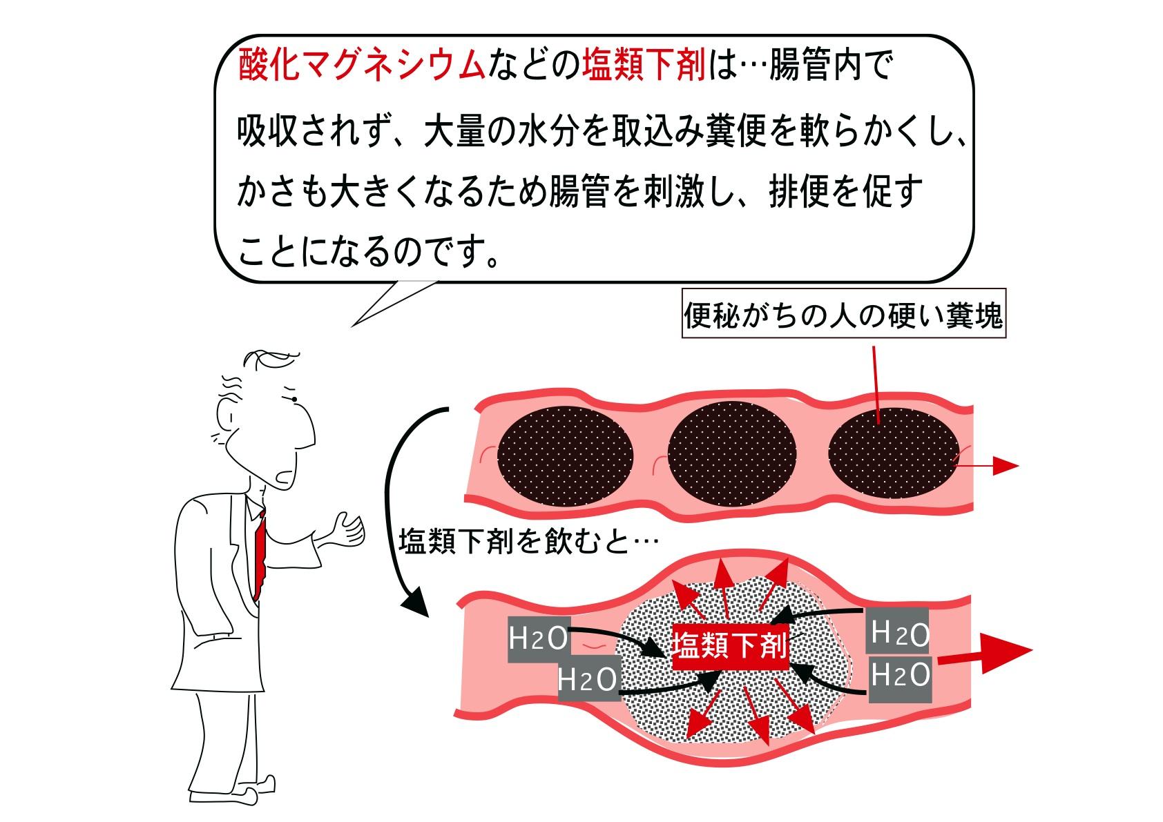 酸化マグネシウムなどの緩下剤の作用機序を示す図