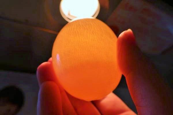 卵を照明にかざしている様子