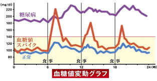 血糖値の日内変動を示したグラフ