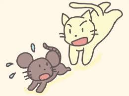 ネズミを追うネコ