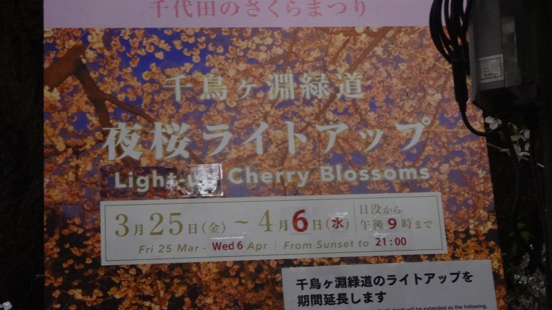 千鳥ヶ淵 夜桜ライトアップの看板